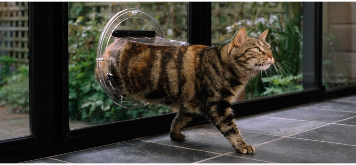 Transcat Clear Cat Door