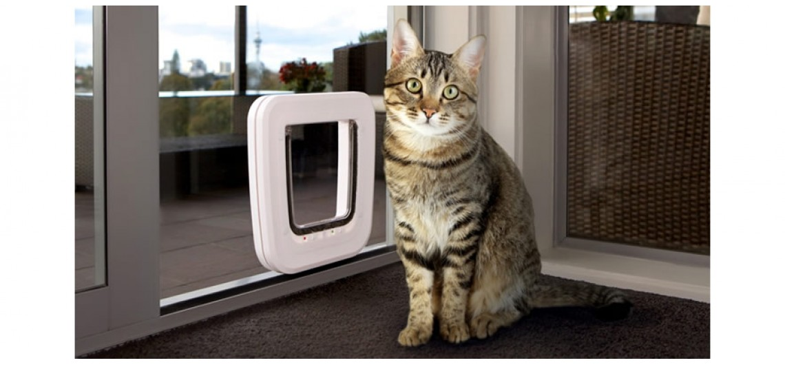 Transcat White Cat Door